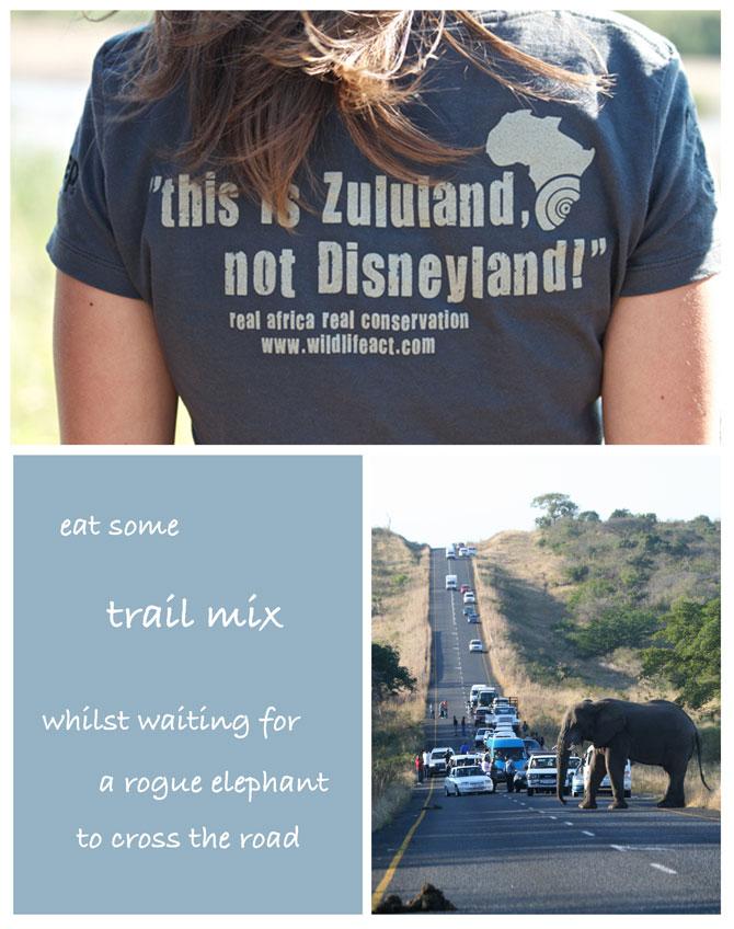 Zululand T Shirt