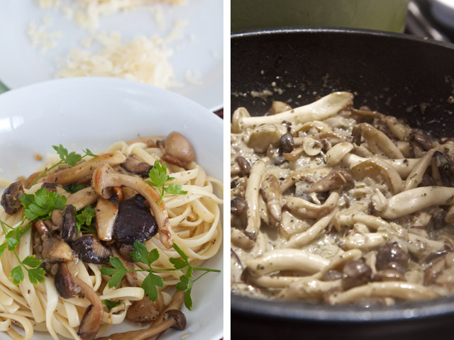 making wild mushroom pasta
